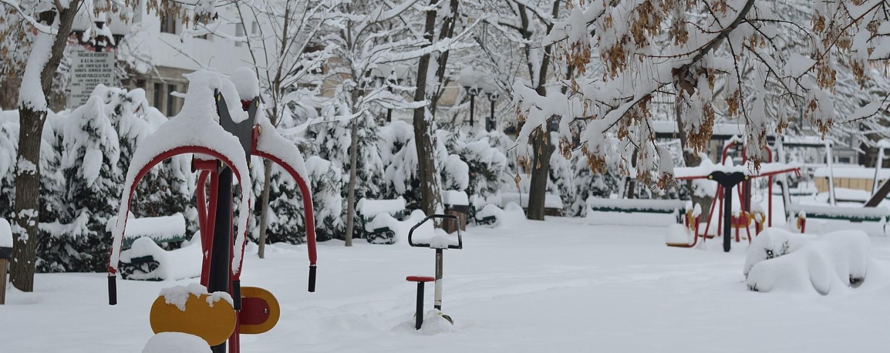 Cod Galben de ninsori în Dâmboviţa