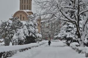 zapada ianuarie-9