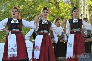 zilele cetatii targoviste-2013-14